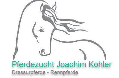 Pferdezucht Joachim Köhler
